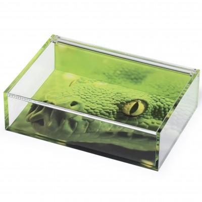 Boîte haut de gamme transparente pour loisirs